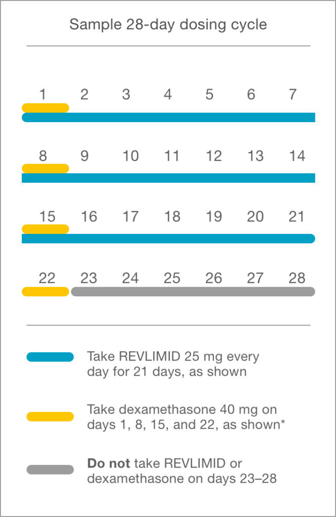 Sample 28-day dosing cycle for REVLIMID® plus dexamethasone for newly diagnosed multiple myeloma patients