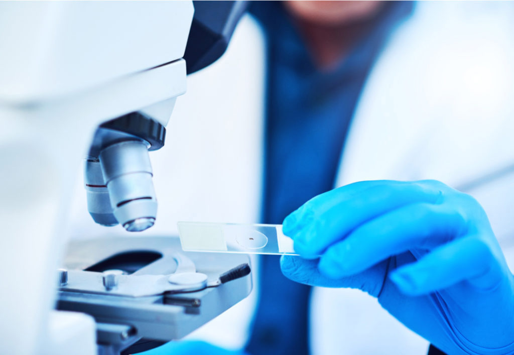 FL and MZL are non-Hodgkin's lymphomas